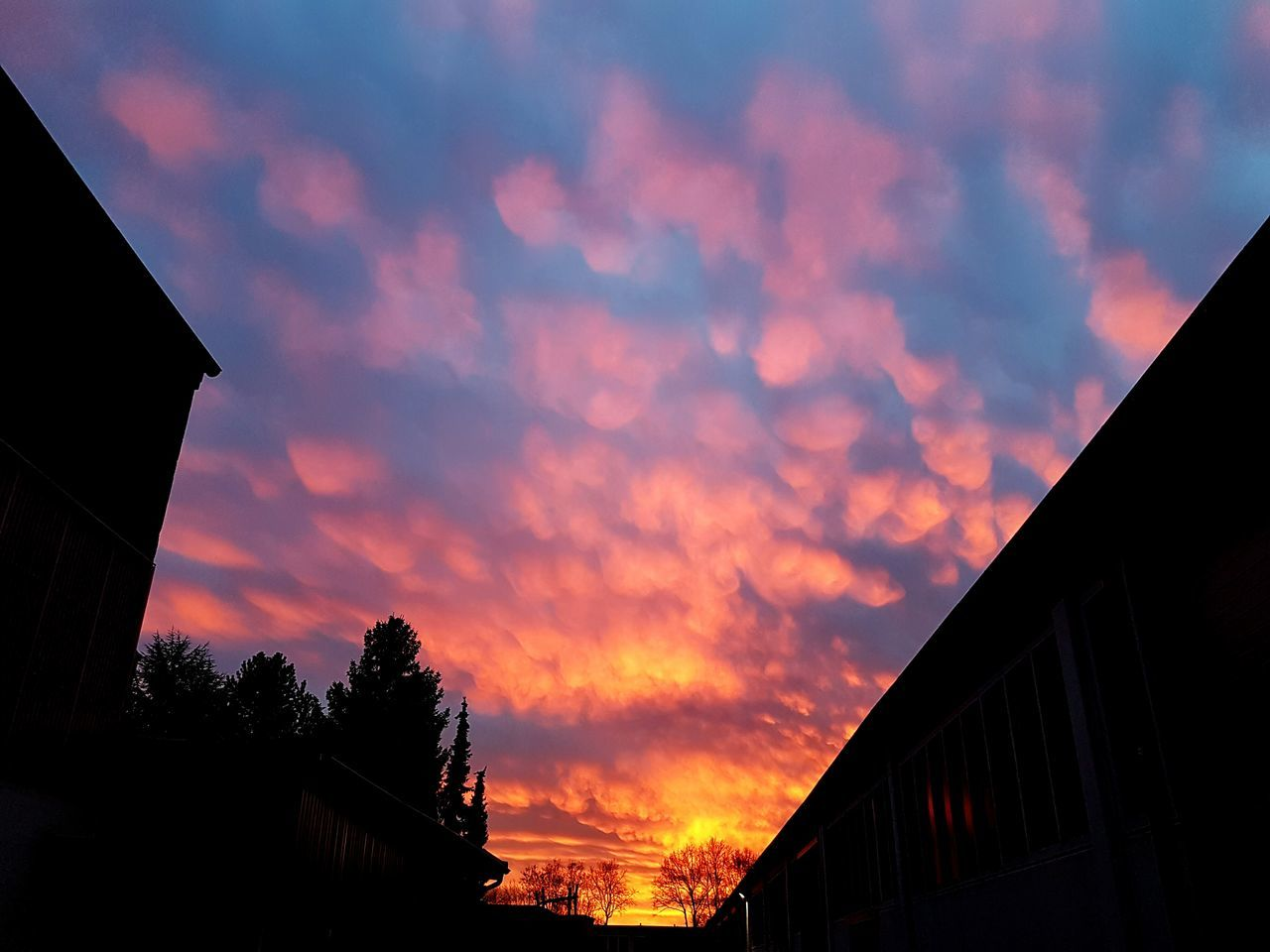 Sunset Sky Cloud - Sky Dramatic Sky Beauty In Nature Outdoors Nature Bloodred Bloodredsky