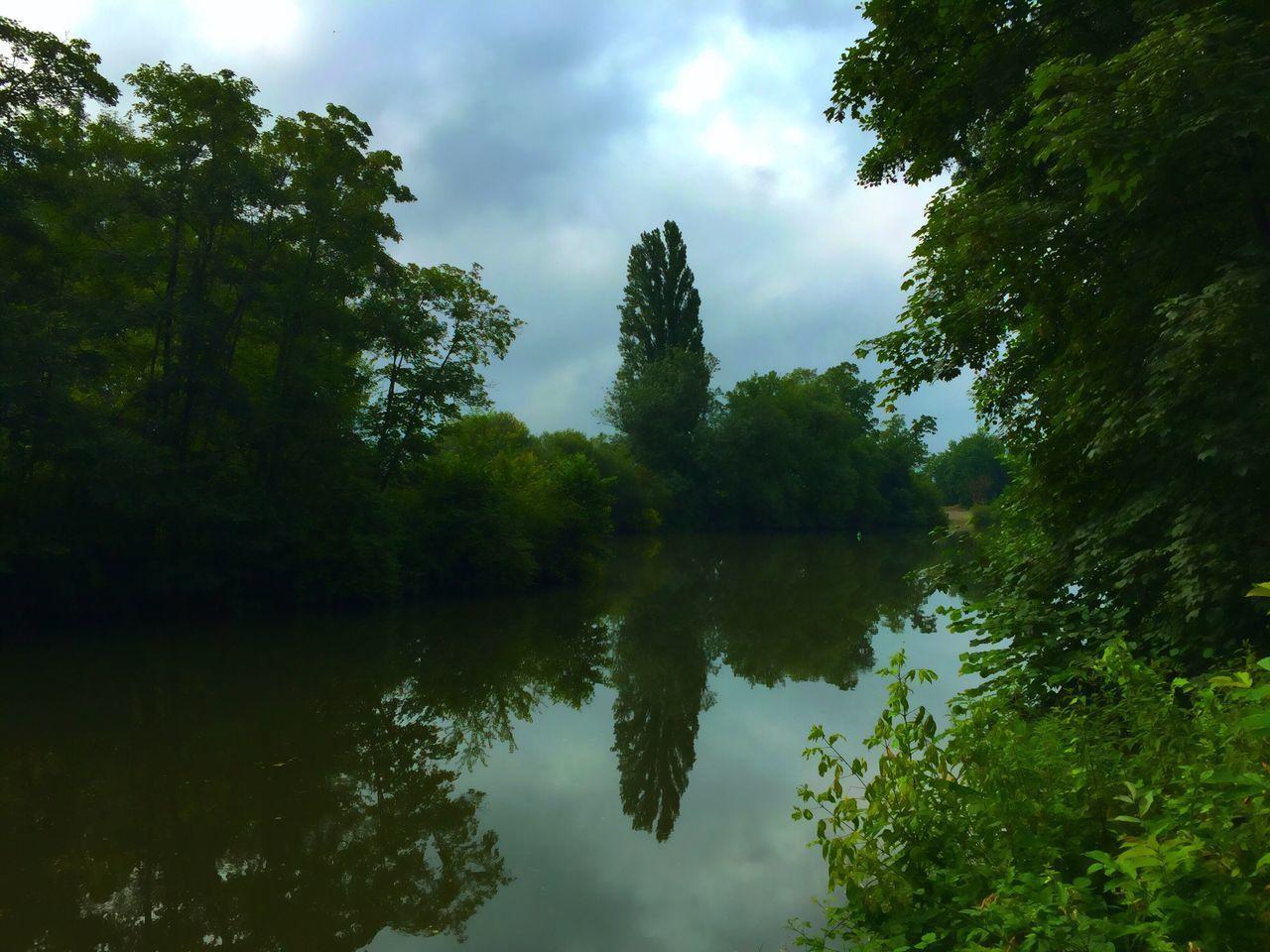 Nature Sur Le Chemin En Balade Sur Les Chemins Au Bord De L'eau