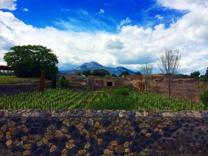 Pompeji Antique Italy History Garden Photography Blue Sky Vesuvio