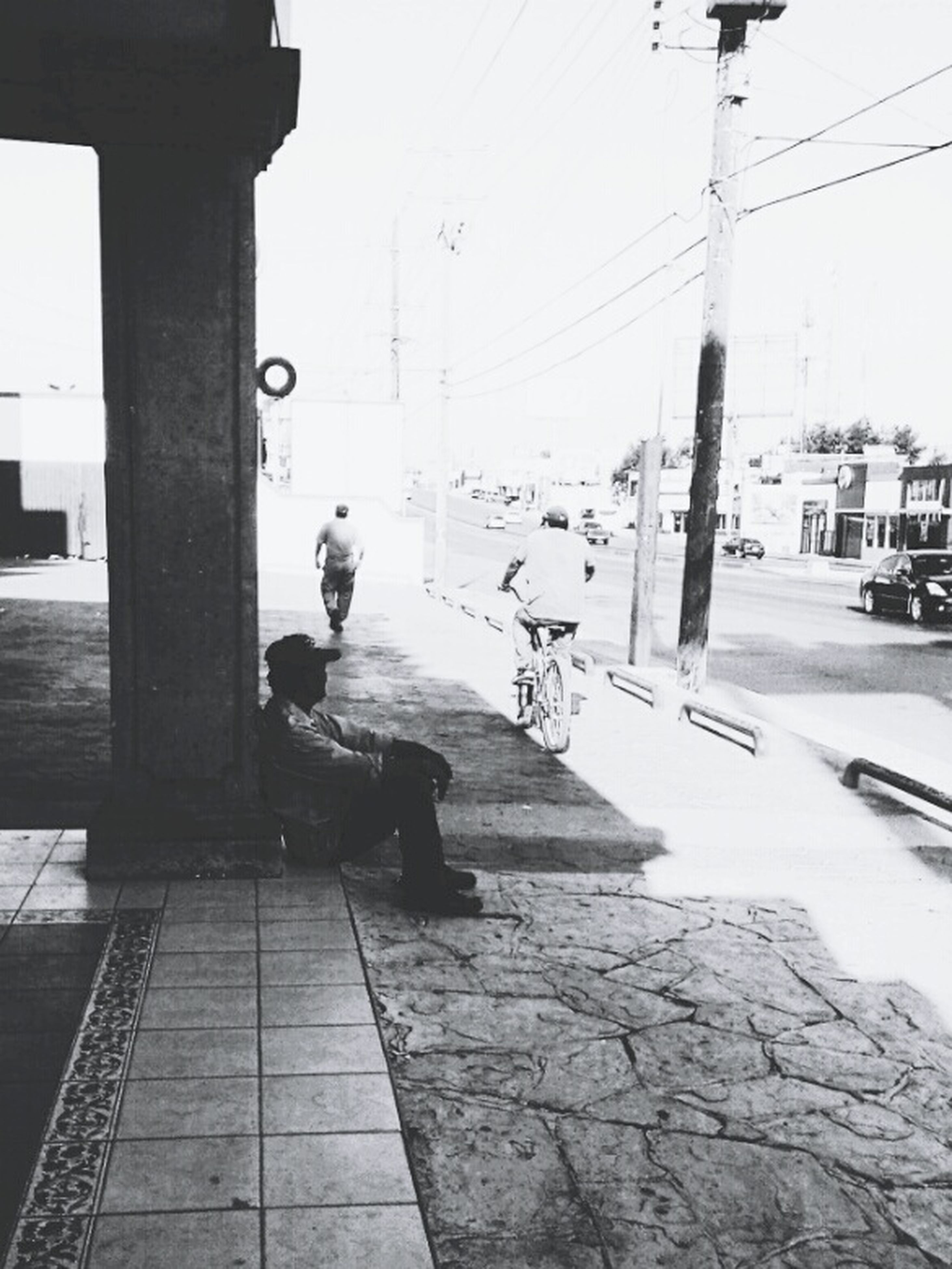 building exterior, street, built structure, architecture, city, full length, walking, one animal, animal themes, rear view, transportation, city life, men, road, sidewalk, street light, dog, power line
