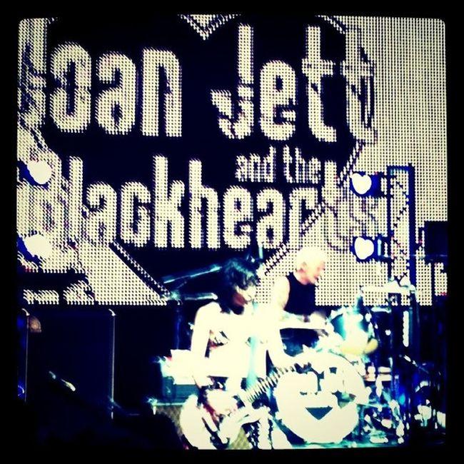 SunsetSounds Joanjett Blackhearts Musicfestival LeatherBikini