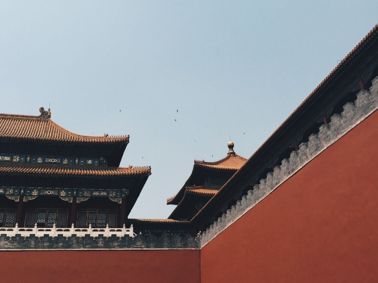 07.07.15 Architecture Built Structure Building Exterior Clear Sky Low Angle View City Day History Historical Building Minimalism Roof No People Bird Outdoors Animal Themes (null)Forbidden City EyeEm Best Shots EyeEm Best Edits Beijing 北京 China 中国 BEIJING北京CHINA中国BEAUTY