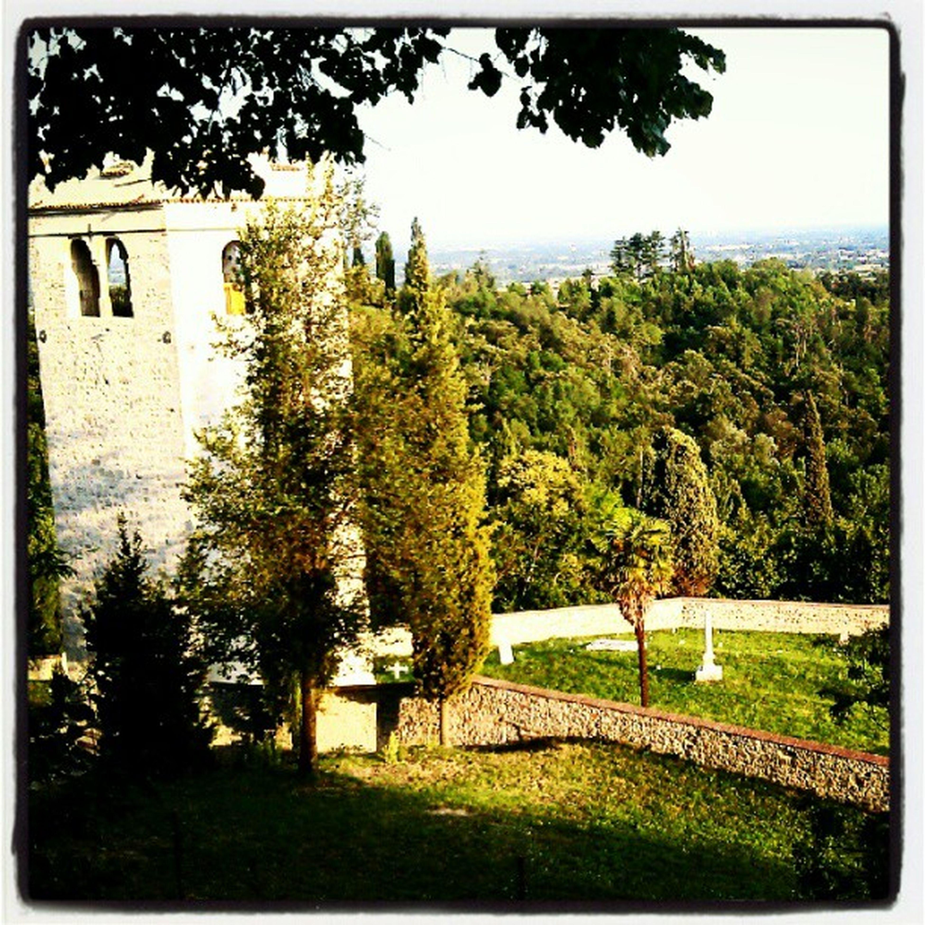 Home . Hobisognodivacanze Tantobisogno Instamood instamoment castle tower graveyard ezzelinodaromano ezzelini history oldtimes onceuponatime igers igersitalia veneto Treviso stufodimetterehashtag unknown