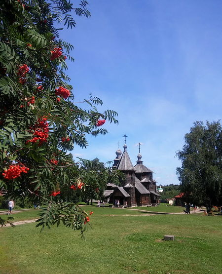 Architecture Beauty In Nature Church Grass Nature No People Outdoors Russia Sky Summer Suzdal Tree Wood