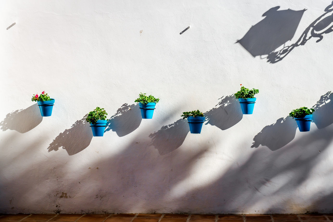 Blue flower pots on a whitewashed wall in Mijas. Andalusian white village. Costa del Sol. Spain Malaga Mediterranean  Mijas SPAIN Sunlight Blue Costa Del Sol Decorated Decoration Flower Flower Pots Flowerpots No People Plant Potted Flowers Potted Plant Pueblo Blanco Shadow Sunlight Typical Houses Wall - Building Feature Whitewashed Houses