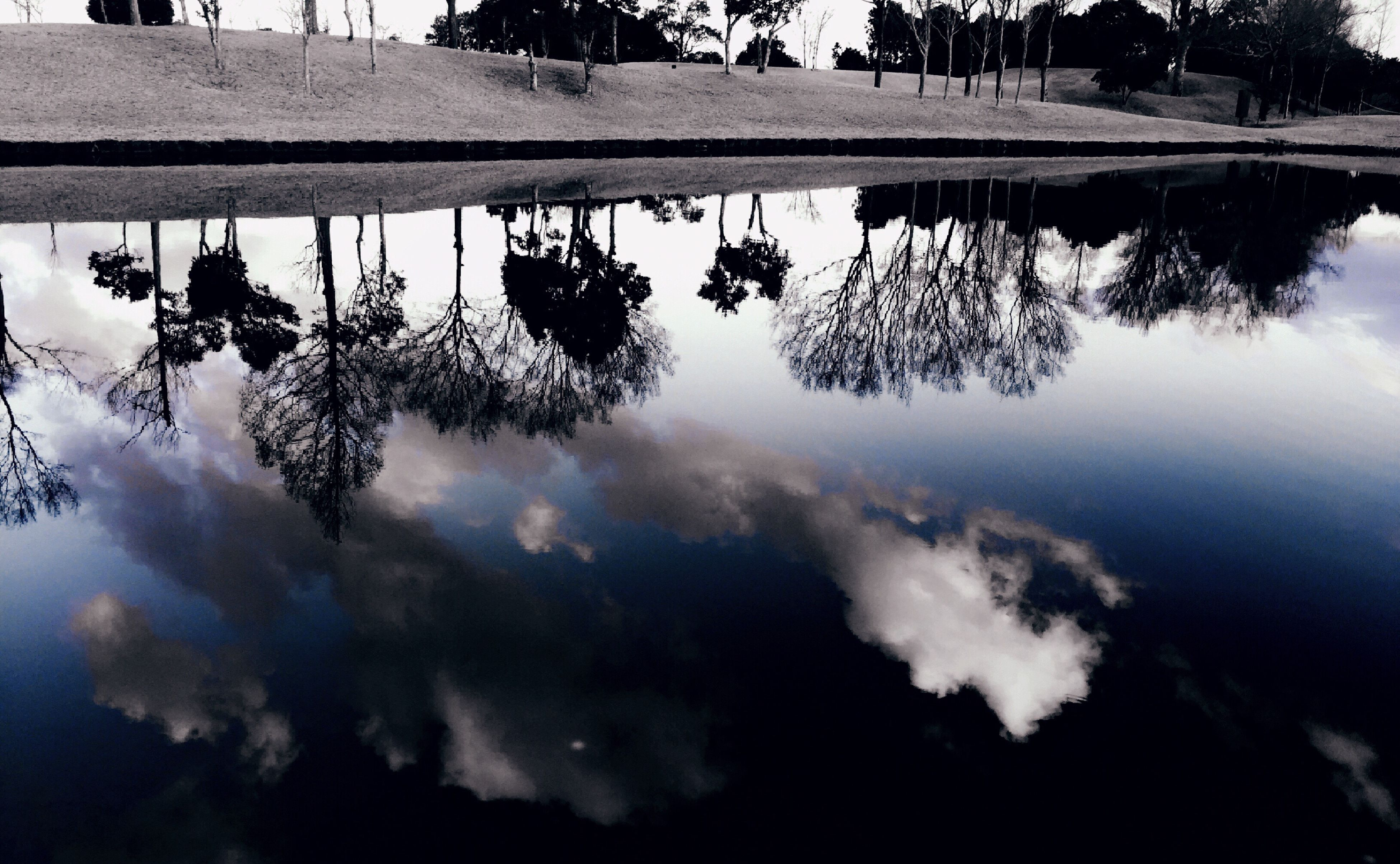 tree, nature, sky, reflection, water, silhouette, lake, beauty in nature, no people, outdoors, tranquility, scenics, cloud - sky, day