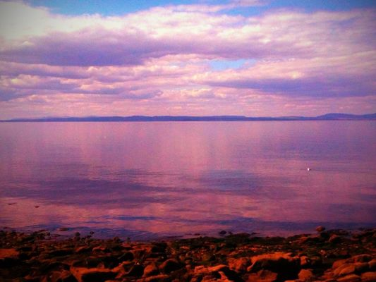 beach at Prestonpans by Rebecca Hale