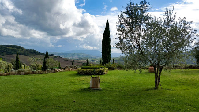 Tuscany Tuscany Countryside Landscape Tranquil Scene Non-urban Scene Outdoors Beauty In Nature Countryside Tranquility Sky Siena Siena, Italy Nature On Your Doorstep Tree Landscape Casole D'elsa Sky And Clouds Hill Views Hillview Hill Country Hillside View Garden Garden Photography Appenninotoscoemiliano Appennino