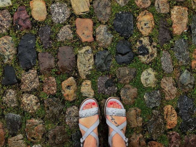 Feet in Freiburg. Cobblestone Day Feet Foot Tattoo Footpath Footwear Freiburg Freiburg Im Breisgau Green Growth High Angle View Human Foot Leisure Activity Limb Low Section Outdoors Person Personal Perspective Plant Sandals Shoe Standing Tattoo A Bird's Eye View Tattoo Life