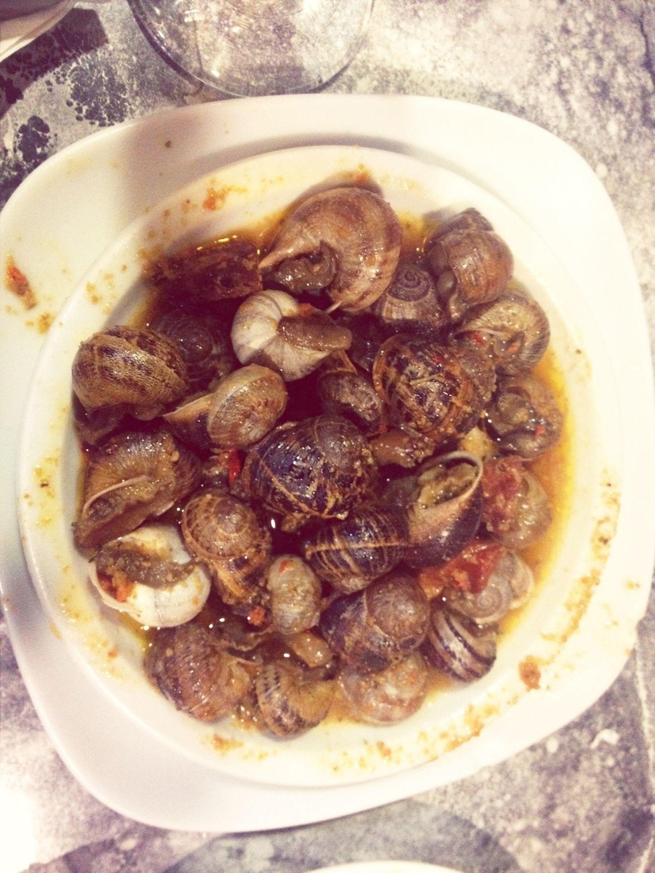 Saucy Snails