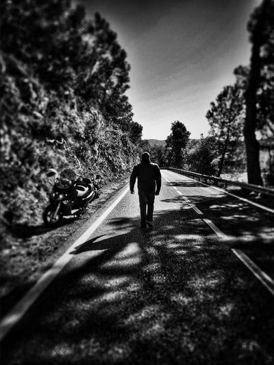 Shadow Bike Friend Blackandwhite Black And White Black&white Black & White Blackandwhite Photography Tree Catalonia Road My Photo