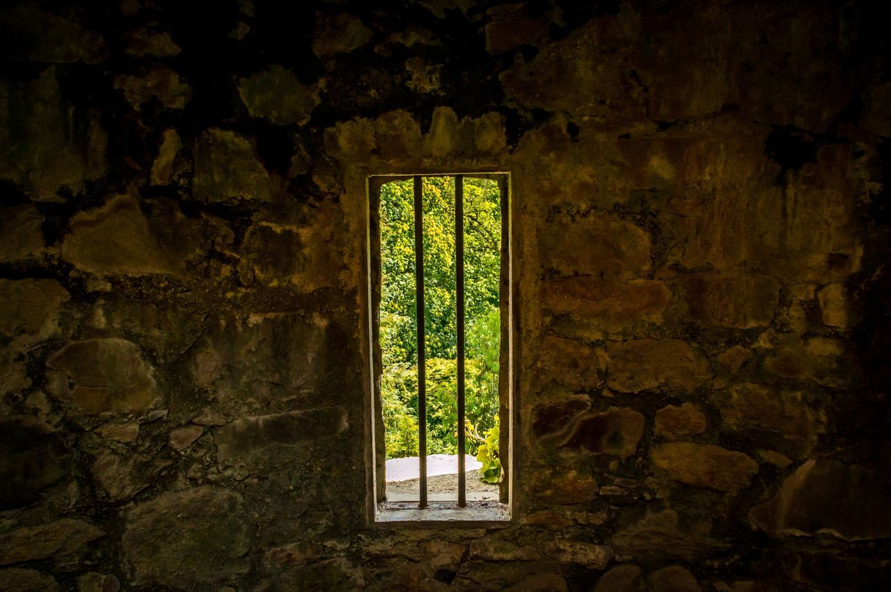 Trees Seen Through Window Of Historic Building