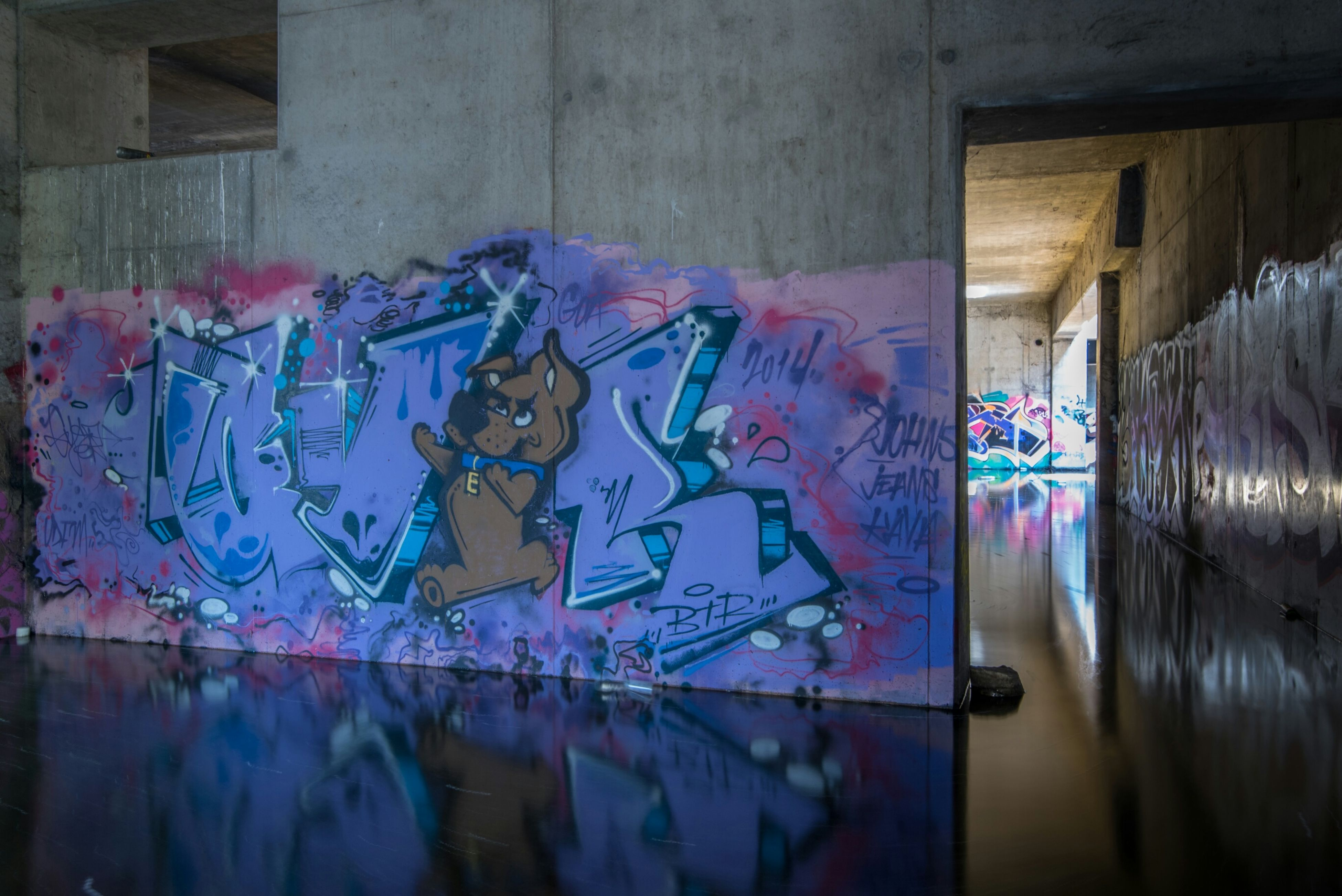 GYER piece found in a flooded Abandoned Bayarea building. Bayareagraffiti Graffiti Urbex