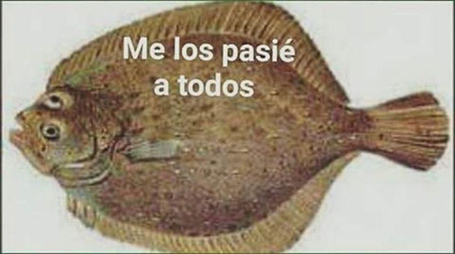 Dejare esto aquí y me retirare lentamente jajajaka PSU Psuql Psulenguaje 2015  Chile