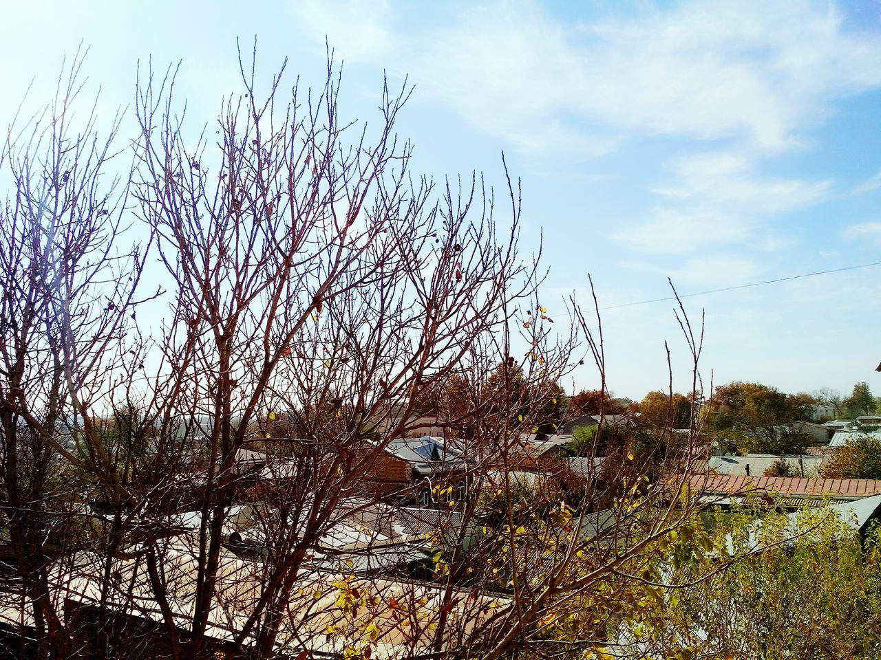 Outdoors Sunday Morning In Tashkent Tashkent ♥ Day Nature Sky Perspectives On Nature
