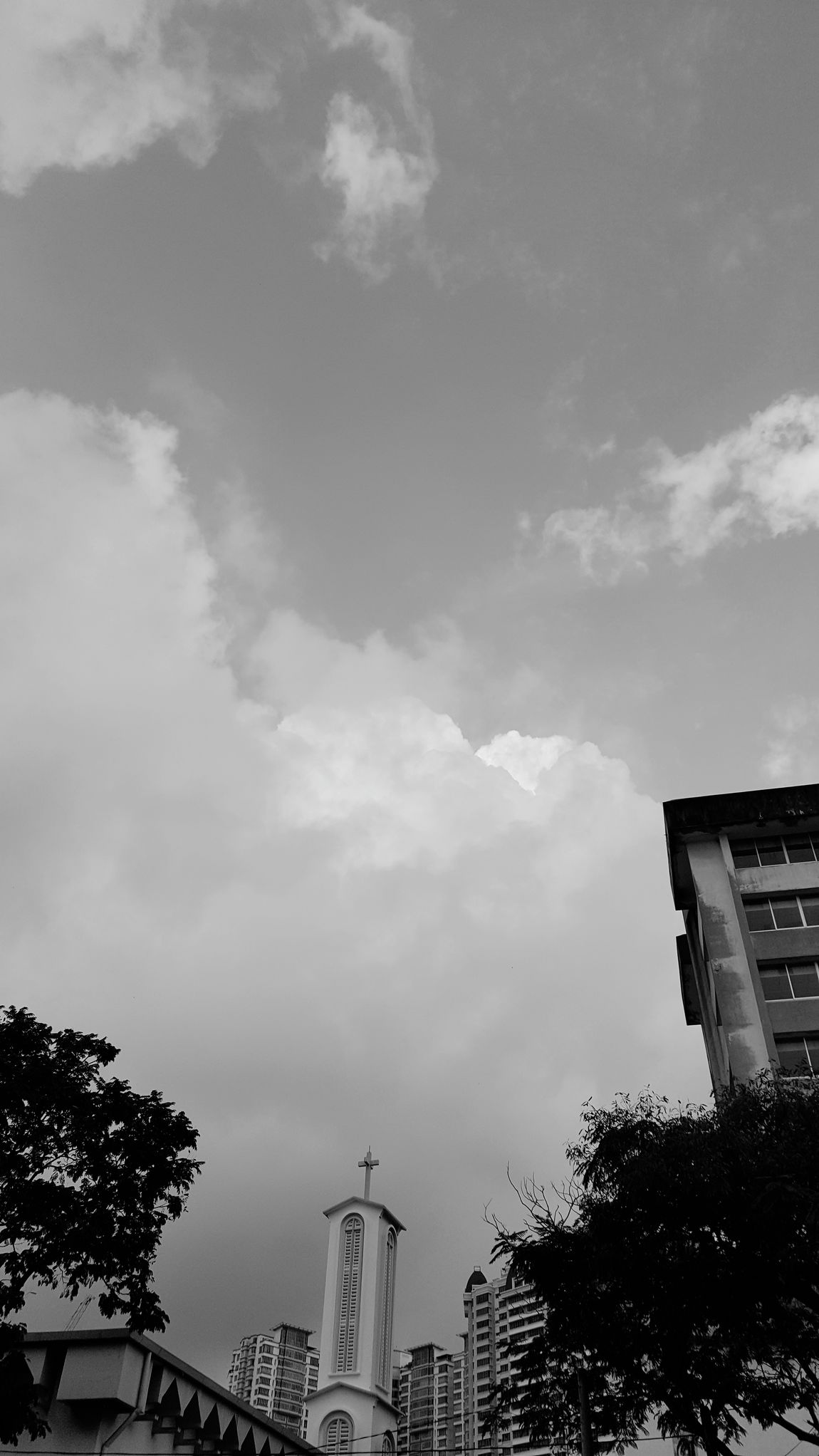 The Week On EyeEm Architecture Building Exterior Low Angle View Built Structure Tree Cloud - Sky Sky Outdoors City No People Skyscraper Day Penang Island Peaceful Morning Macalister Road Penang Freshness Black And White Friday