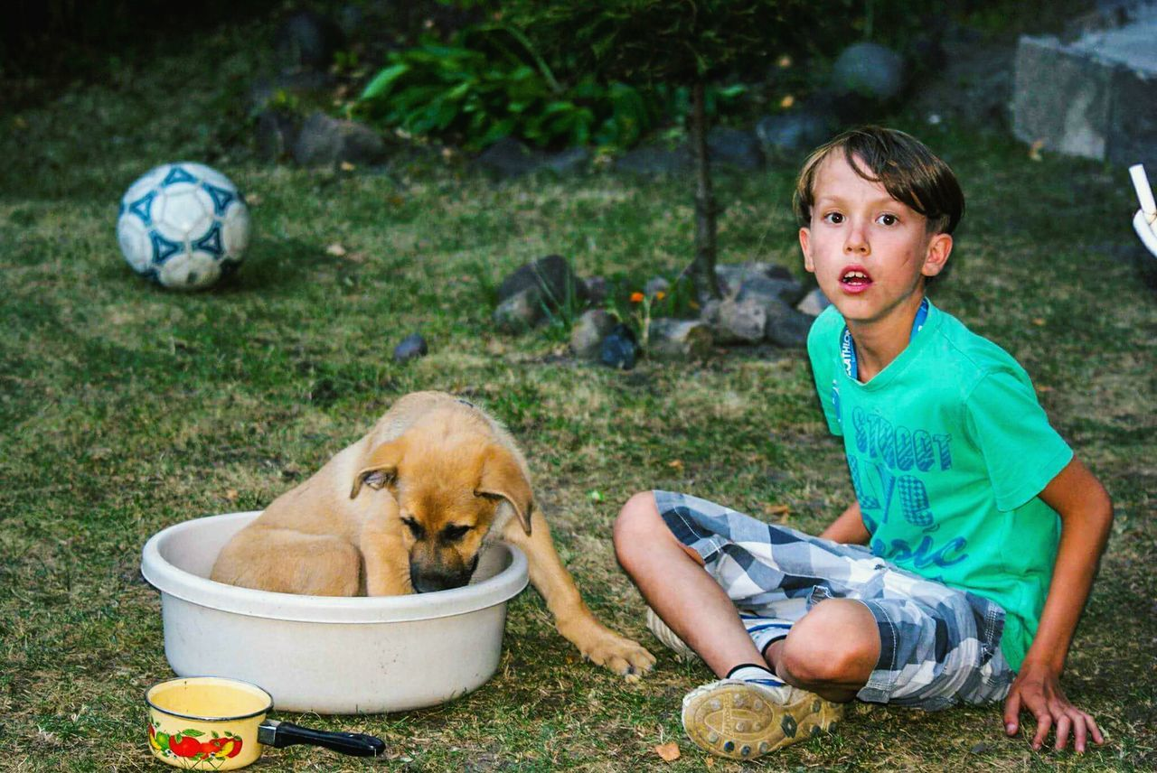 Child Soccer People Soccer Ball Grass One Person Dog Childhood Outdoors Pets Ball Human Body Part Day Doggy Love
