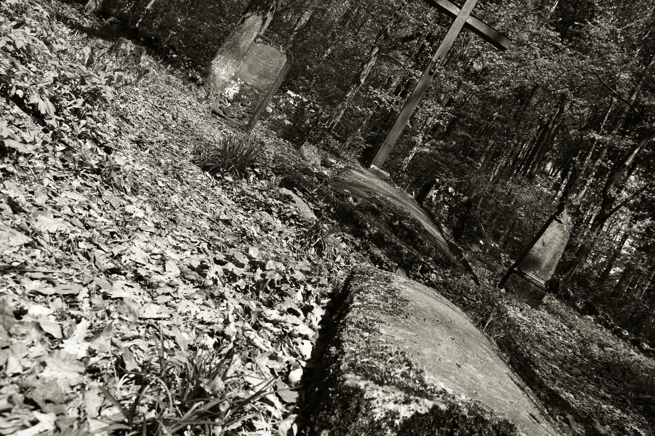 Blackandwhite Day Gravestones Graveyard Idyllic No People Outdoors Scenics