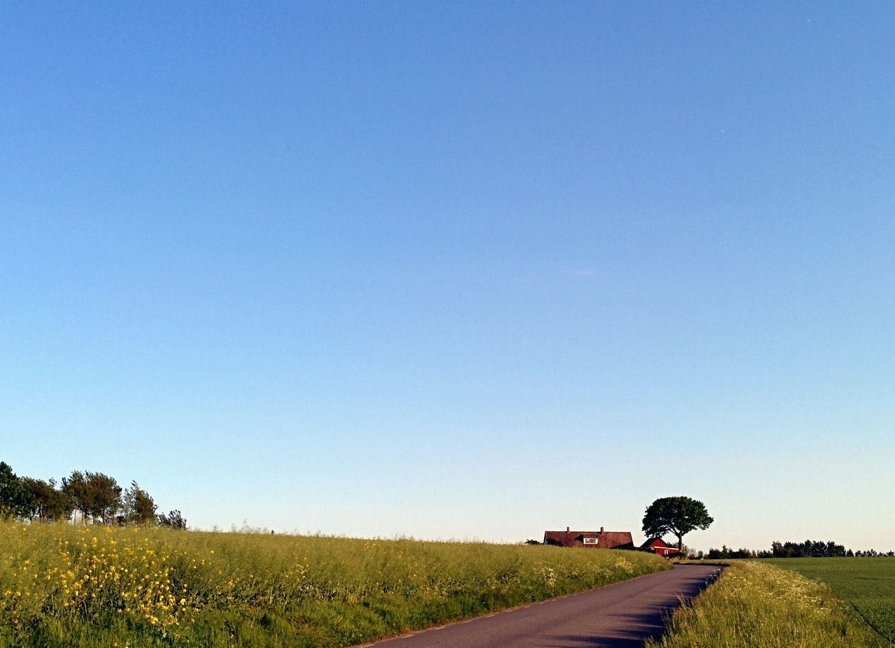 Beautiful stock photos of farm, Clear Sky, Countryside, Diminishing Perspective, Direction