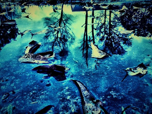 Something about the eeriness of this shot just moves me... EyeEm Best Shots Reflection_collection Reflection Reflections In The Water Reflection Perfection  Reflection In The Water Reflection Obsession Reflections And Water Reflections... The Great Outdoors With Adobe
