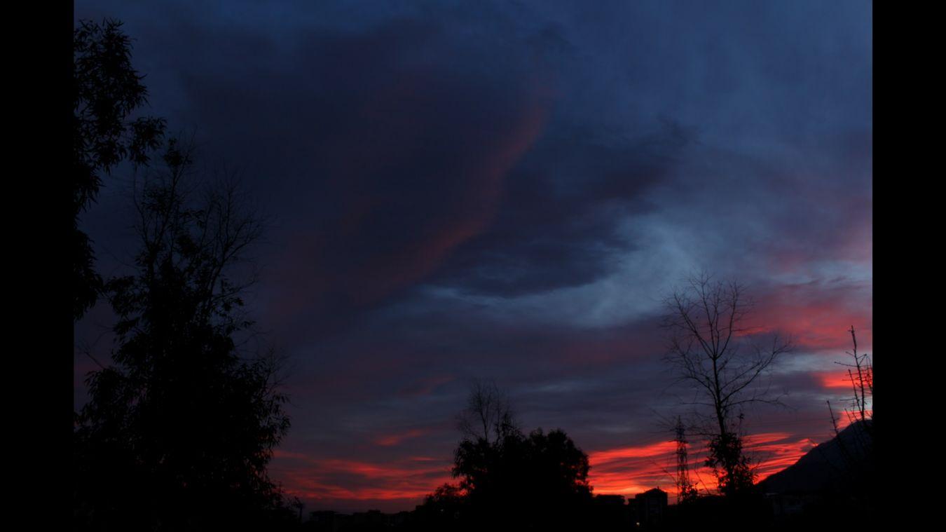 Silhouette Sky Tree Nature Outdoors Dramatic Sky Landscape Cloudscape Dawn