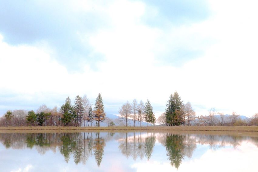 Tree Reflection Tranquil Scene Sky Tranquility Nature Scenics Cloud - Sky Beauty In Nature Built Structure No People Outdoors Day Architecture Travel Destinations Building Exterior Water Photography Landscape Beauty In Nature EyeEm Gallery The Week On EyeEm Exceptional Photographs