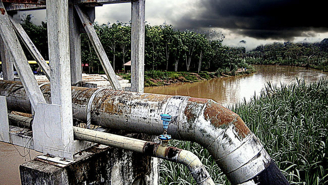 Jungle River First Eyeem Photo