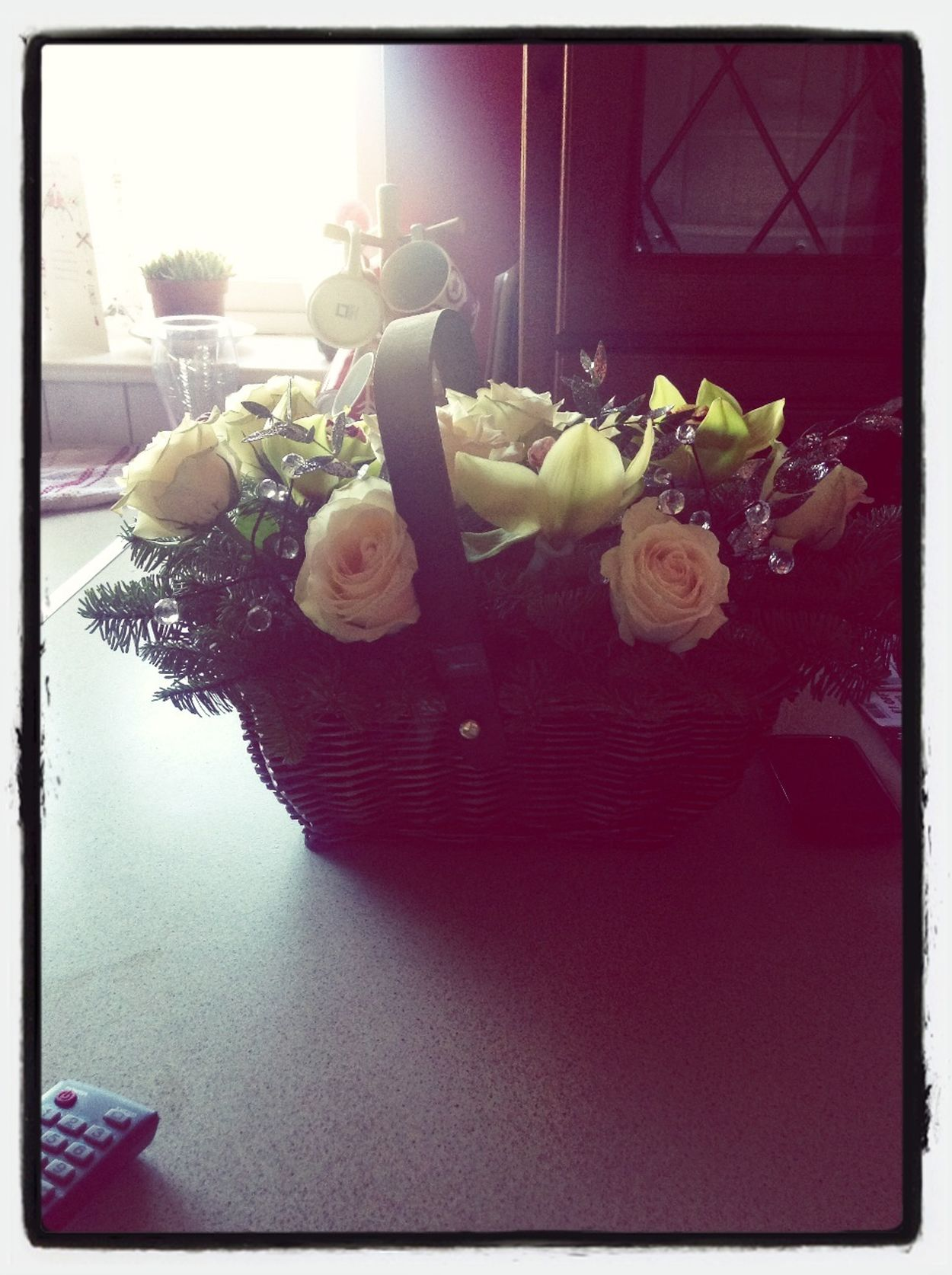 Christmas flowers! Happy Christmas EyeEm :)