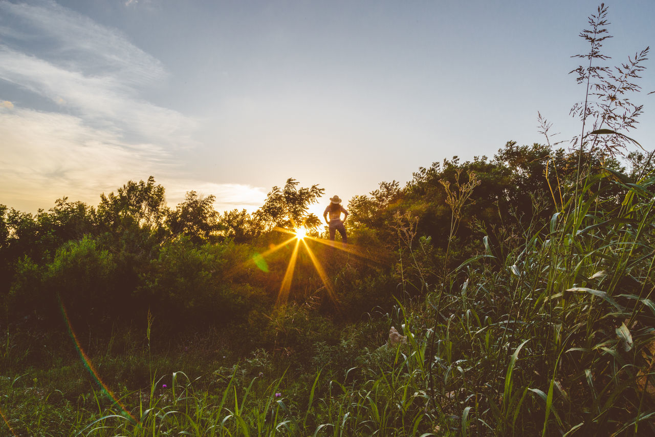 Adventure Beauty In Nature Climbing Explore Field Grass Hiking Landscape Nature Non-urban Scene One Person Outdoors Person Person In Nature Scenics Starburst Sun Sun Rays Sunbeam Sunburst Sunset Tree Woman