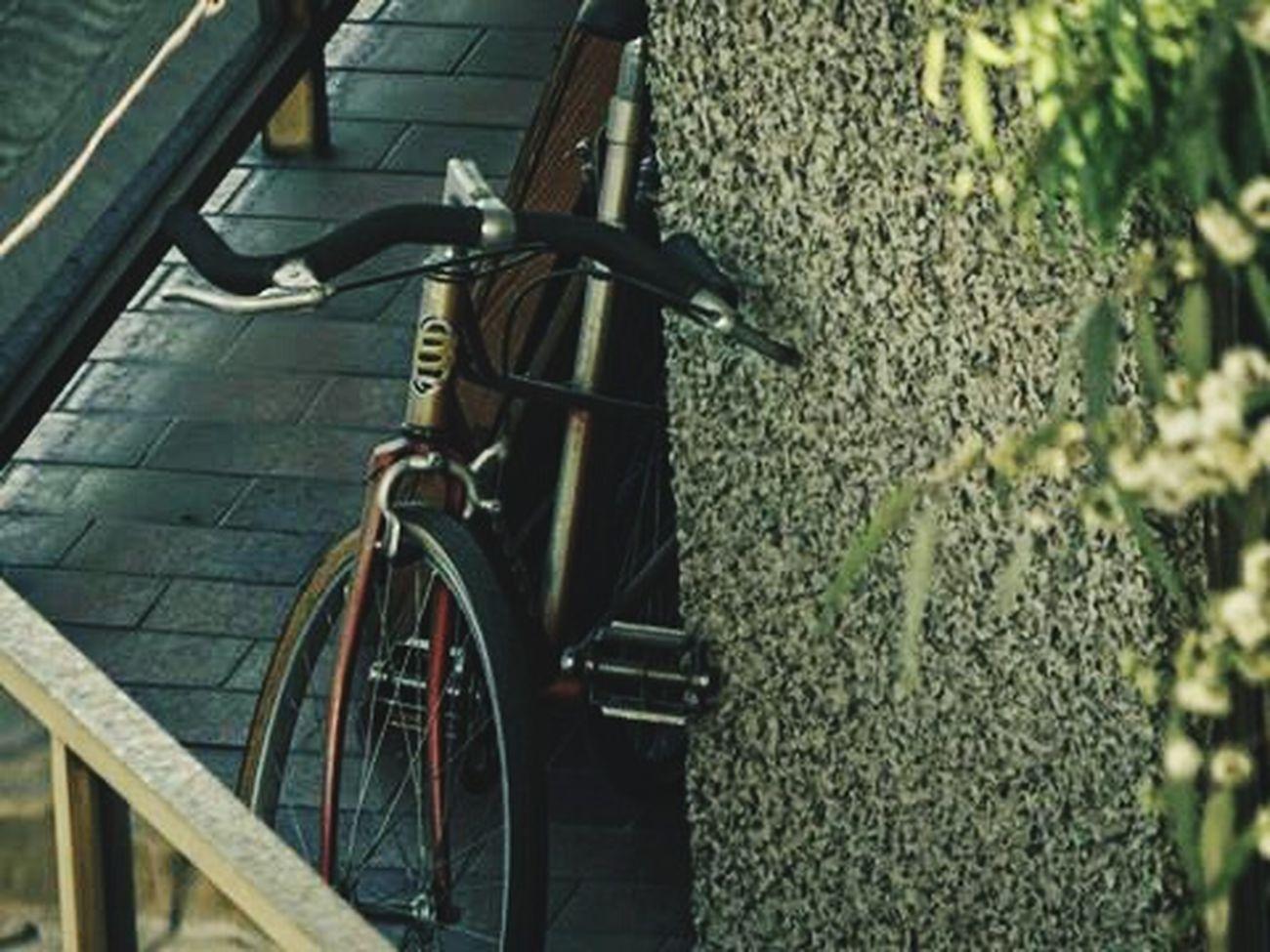 Descanso bicicletero 🚲 Canon Bike