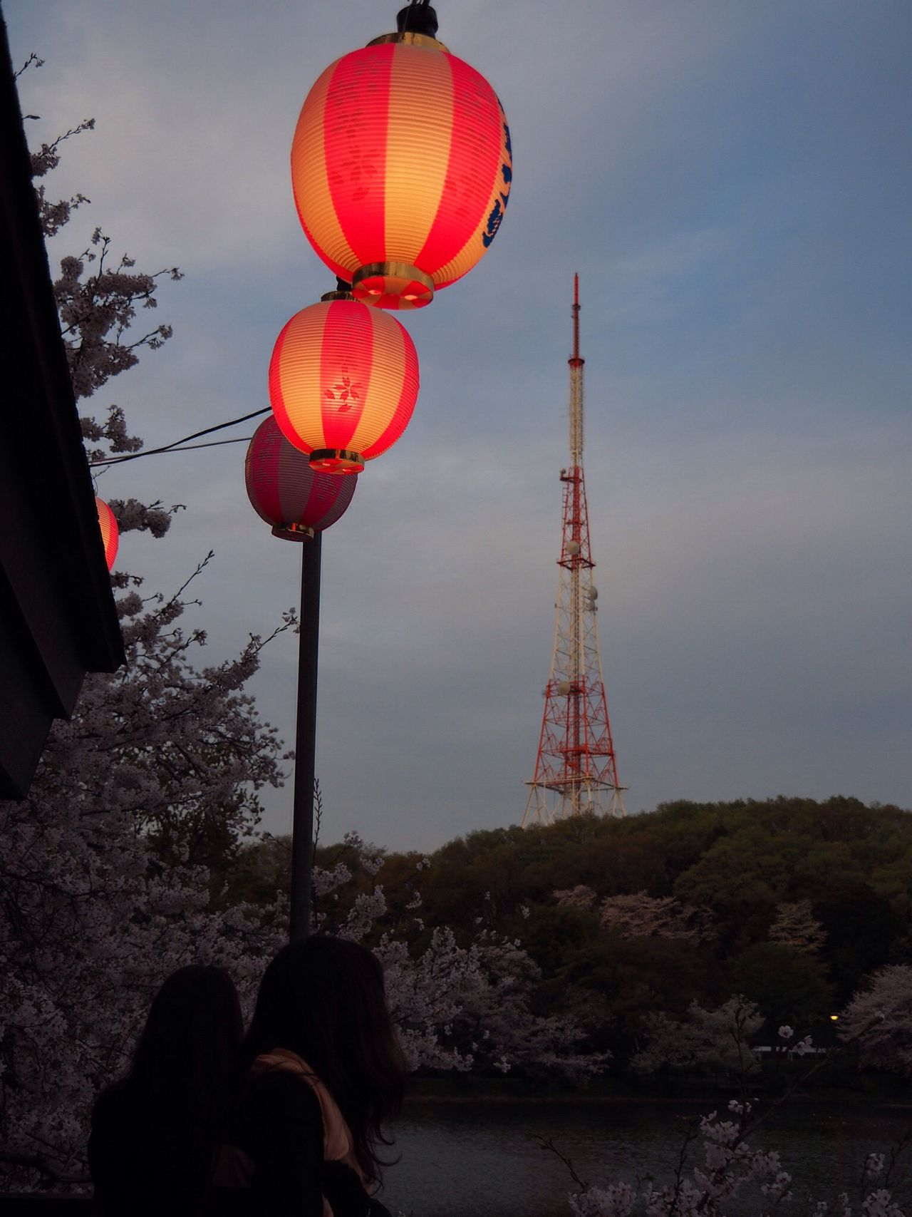 Sakura Season Sakura Sakura2016 Sakura Festival Enjoying The View Asian Culture Asian  Spring Season Spring Enjoying Life EyeEM Photos EyeEm Gallery