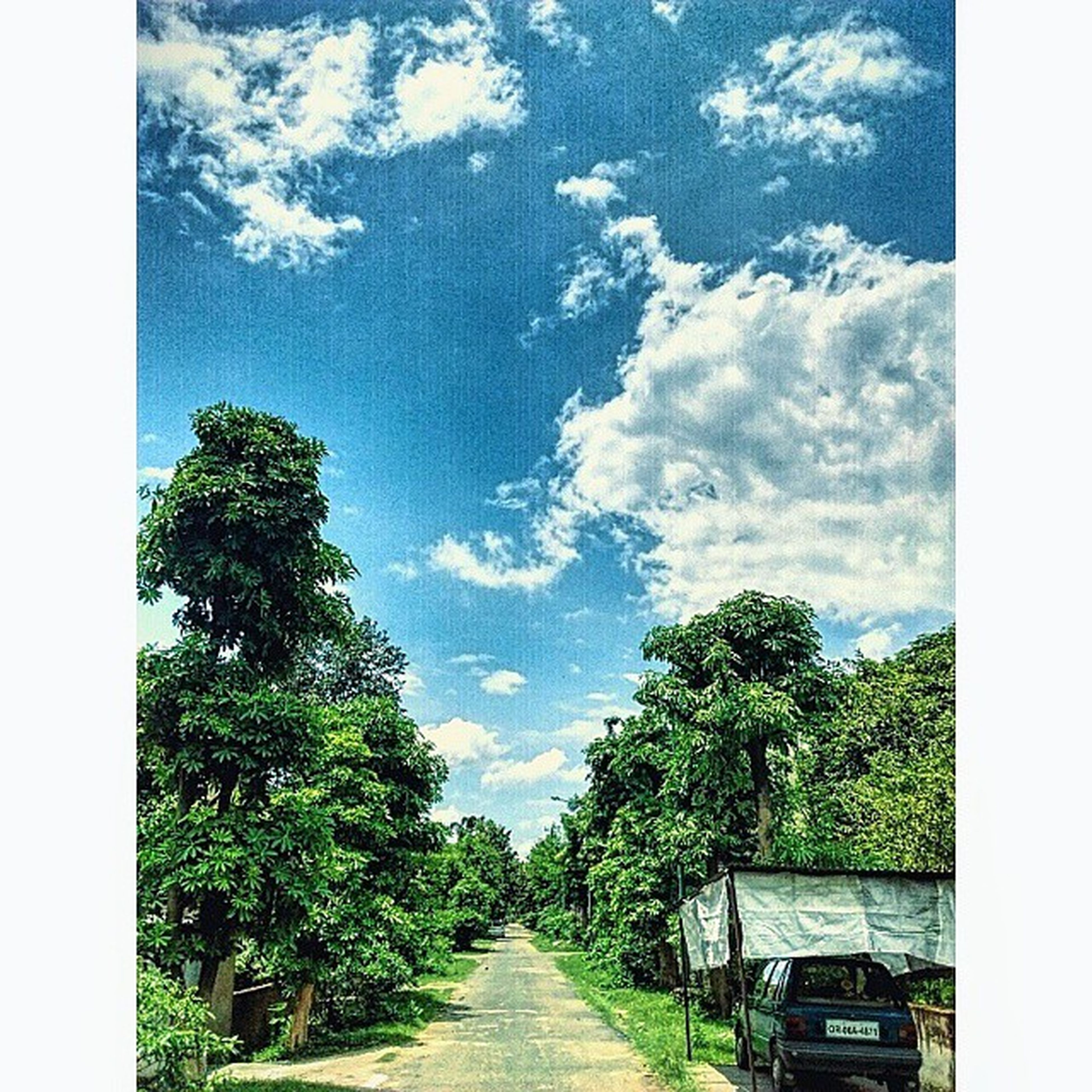 Nalconagar Before_rain Clouds Trees Sky Awesum_weather Road_to_infinity :) Mobileclick