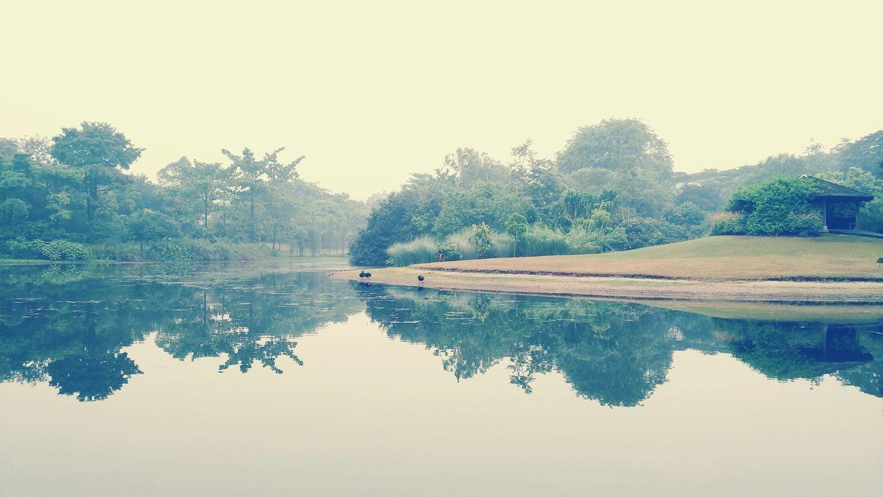 Botanical Gardens Bukittimah Serenity