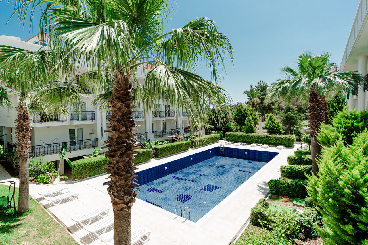 Swimming pool in the residence Alanya Antalya Building Exterior Day Holiday House Luxury Nature No People Outdoors Palm Tree Pool Poolside Residential Building Season  Sky Summer Sunlight Swimming Pool Tourism Tourist Resort Travel Turkey Turkish Riviera Vacations