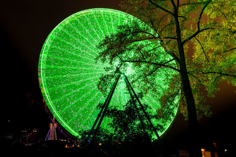 Tree illuminated by the big wheel Arts Culture And Entertainment Big Wheel Green Color Illuminated Night Night Lights No People Outdoors Tree
