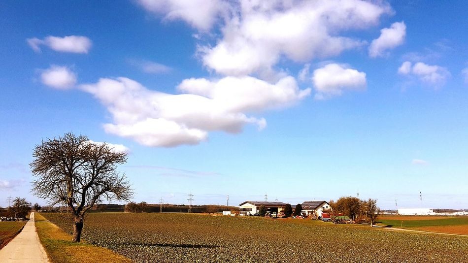 Color Photography Nature_collection EyeEm Best Shots - Nature Farmlandscape Natural Beauty Sky And Clouds Clouds And Sky Nature Photography Heilbronn Germany