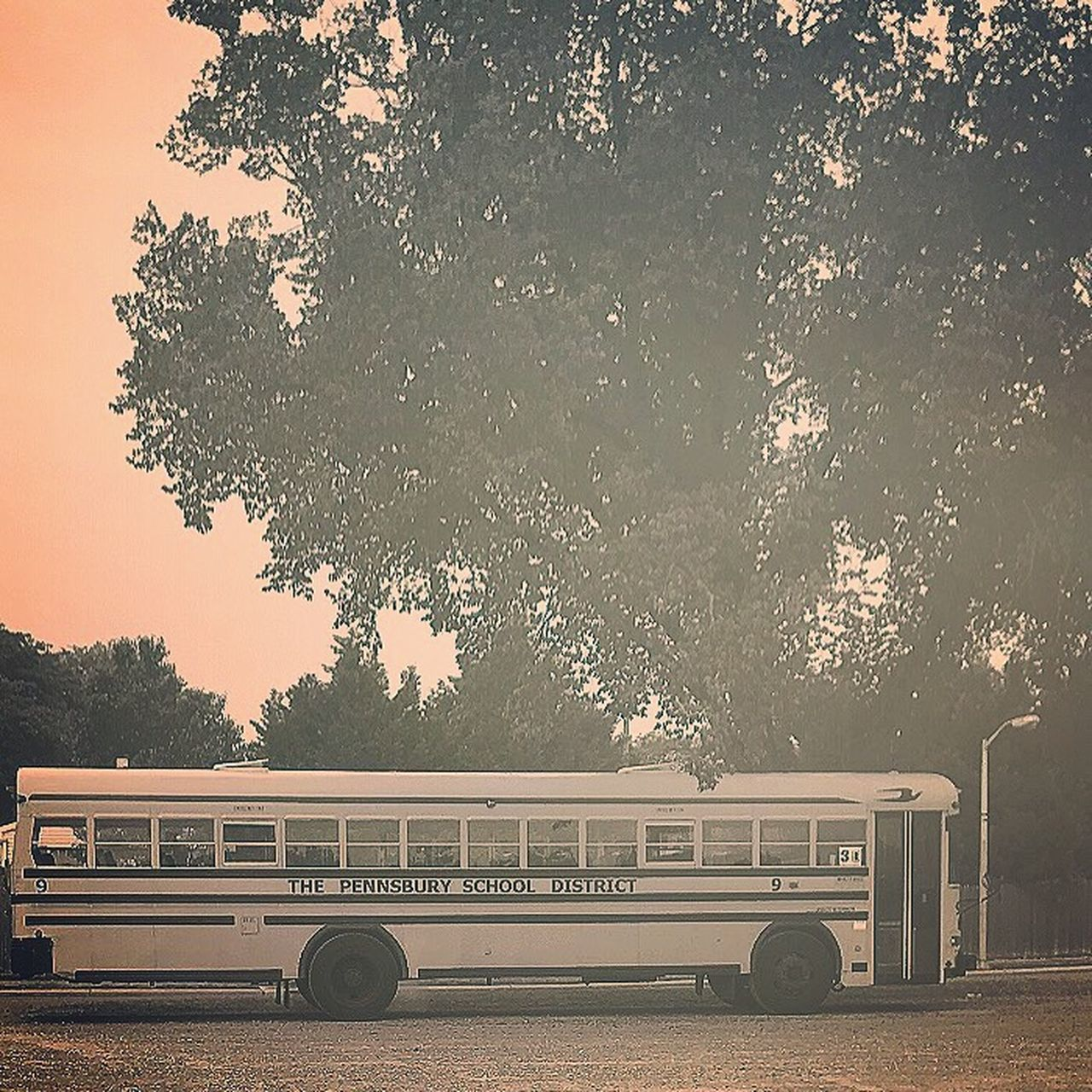 Previous post school bus Tree Retro Styled Mode Of Transport Land Vehicle Outdoors No People Nature Sky Day Iphonephotography Scenics Vintage Affect Sunlight Landscape Camerafilters