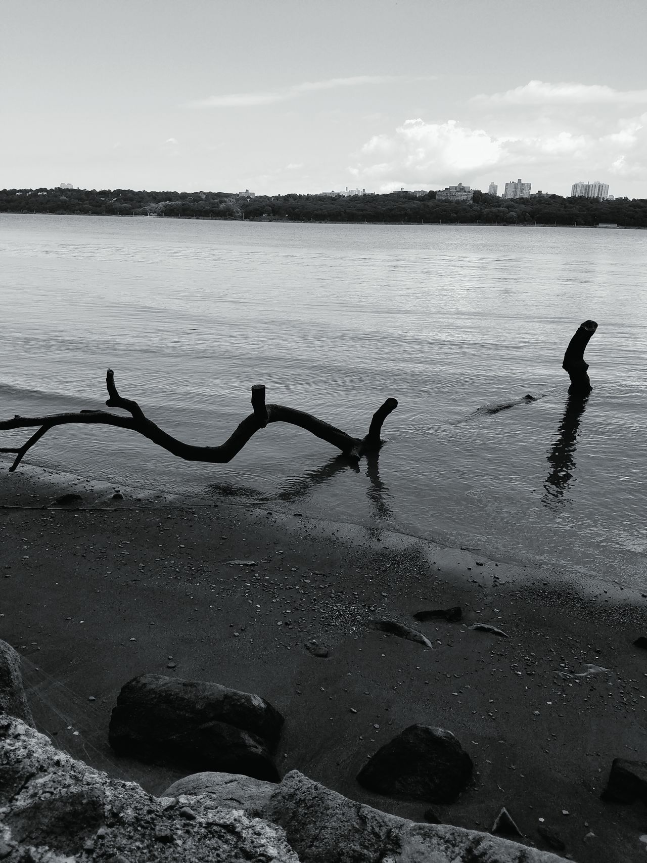 lochness by the Hudson NYC Hudson River Loch Ness Nature Beachside Shoreline Beauty In Nature Palisades Park Black & White Perspective Photography