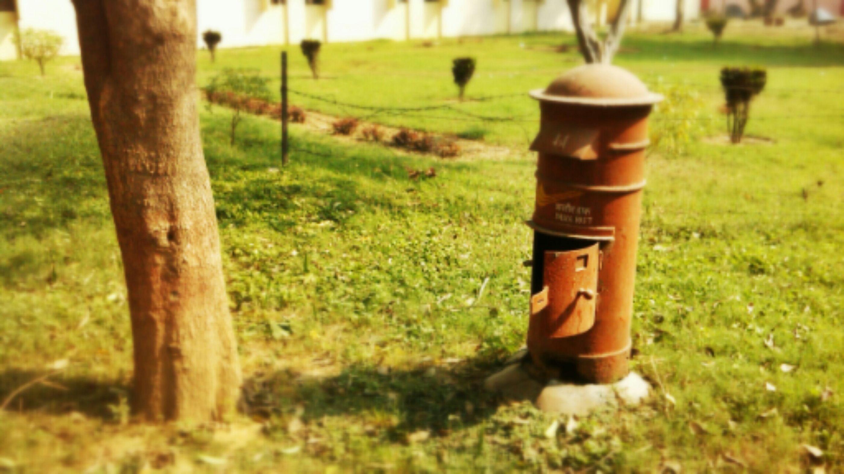 tiltshift Tiltshift Postbox Letter_postbox ... Hugging A Tree Eye4photography  EyeEm Best Shots Eyem Nature Lover Nature