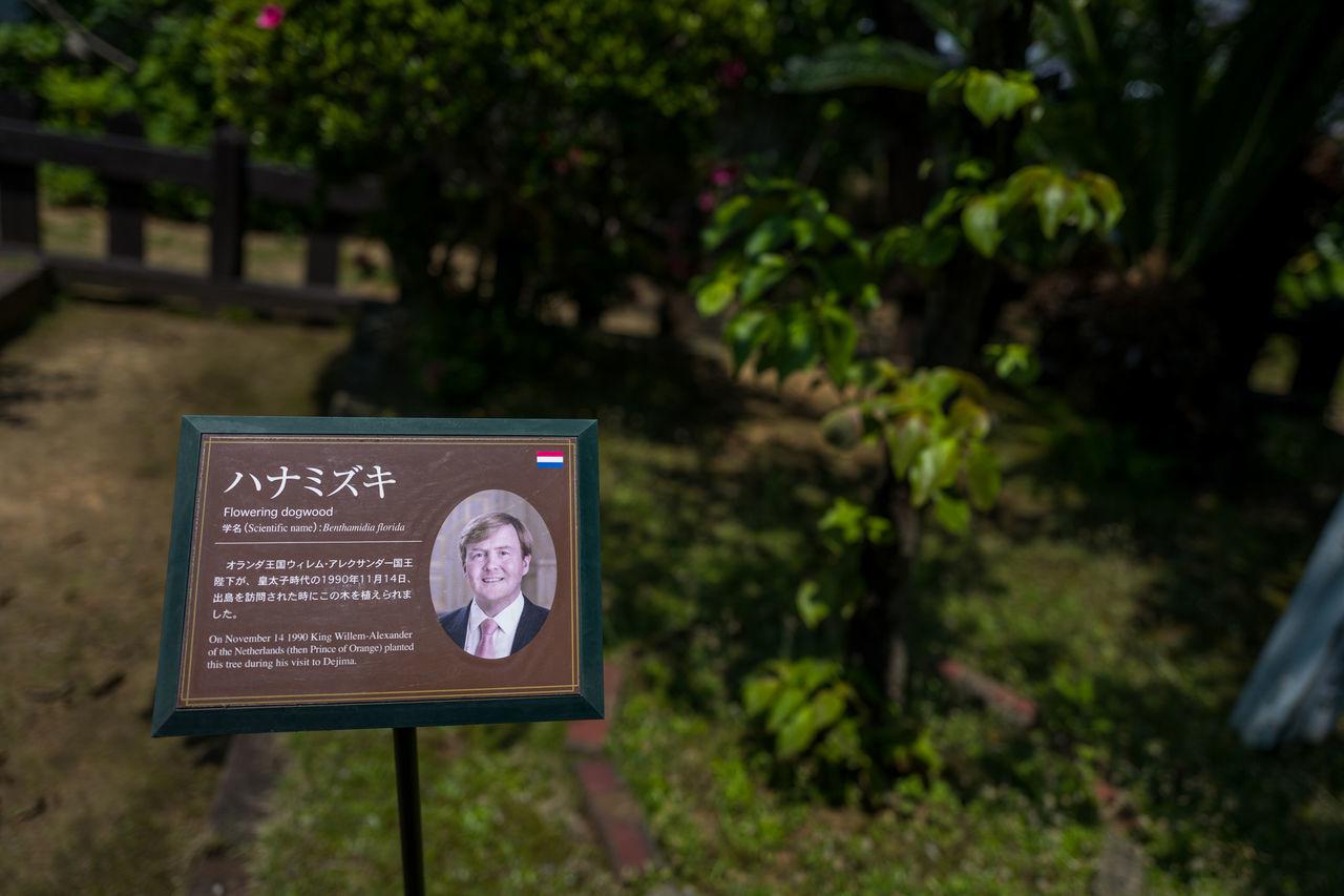 Photos from Nagasaki, Japan Close-up Communication Day Dejima(出島) Focus On Foreground Japan KYUSHU Nature No People Outdoors Text Tree