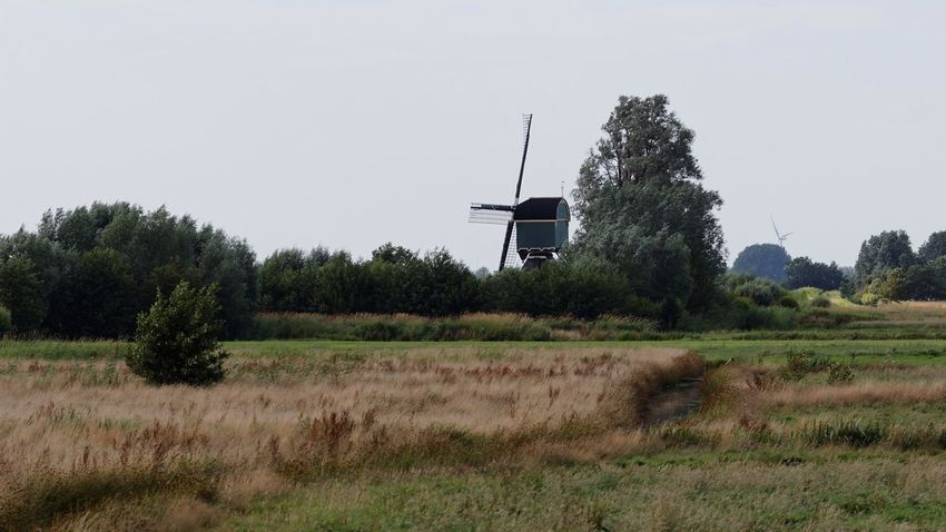Windmills Old and New Dutch Landscape