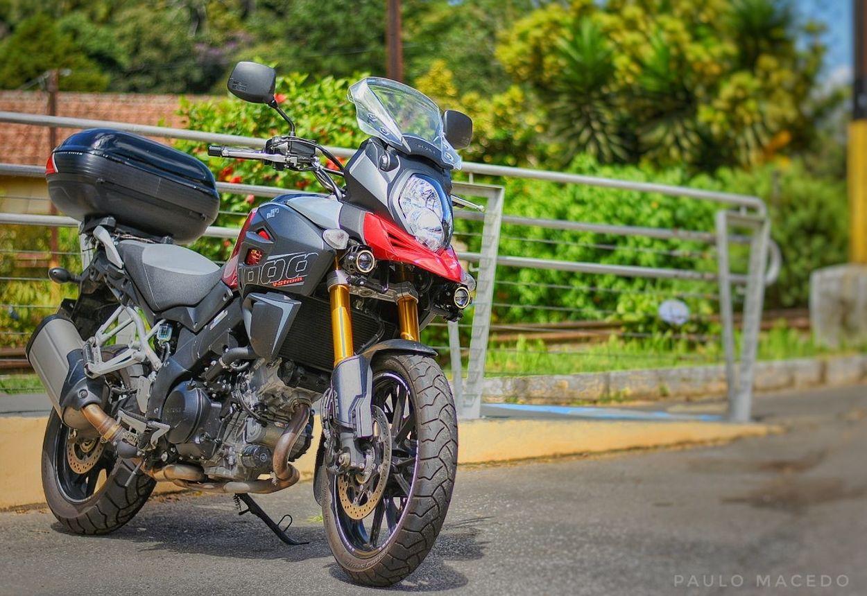Motor Travel VStrom Bike Day Land Vehicle Mode Of Transport Motorcycle No People Outdoors Ride Riding Suzuki Transportation Tree