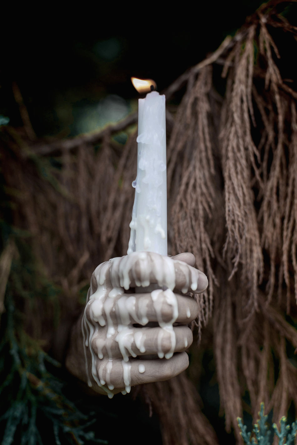 Beautiful stock photos of candle, Candle, Close-Up, Detail, Fire