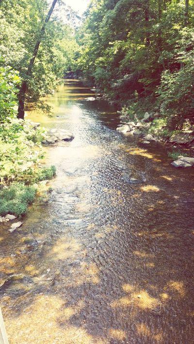 Nature Creek Filter Frederick Md
