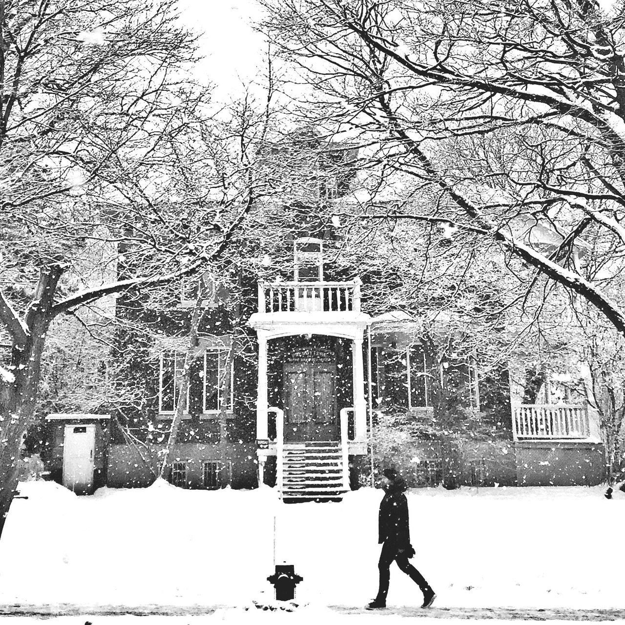 I love winter :) EyeEm Best Shots - Black + White Streetphotography Blackandwhite Montréal The Week Of Eyeem Snow ❄ Bw_collection Streetphoto_bw AMPt Community Winter