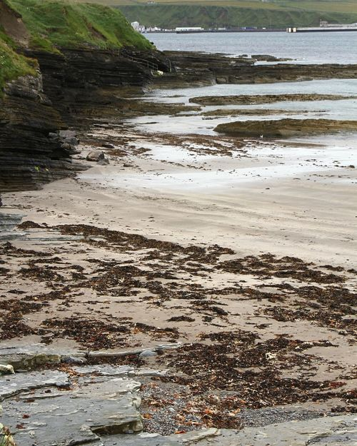 Scotland Thurso Beach Sand Sea Landscape Water No People Beauty In Nature Scenics Horizon Over Water Wave Travel EyeEm Selects EyeEmNewHere The Week On EyeEm Travel Photography Travel Destinations Shell Beautiful Nature Nature The Bottom Of The See See Life Landscape_Collection Landscape_photography Lost In The Landscape Perspectives On Nature