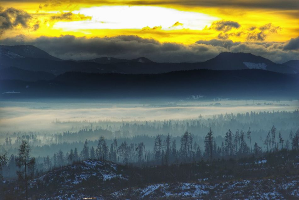 Landscapes With WhiteWall Landscape Winter Landscape Winter Winter Scenery Tatra Mountains Forest Landscape Layers Layers Mountains Dramatic Sky Fog Slovakia Larches Larch Tree