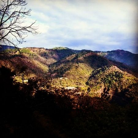Jackandjill Wentupthehill Hills Divine