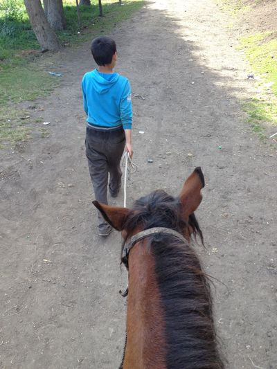 Horse Horse Riding 第一次。