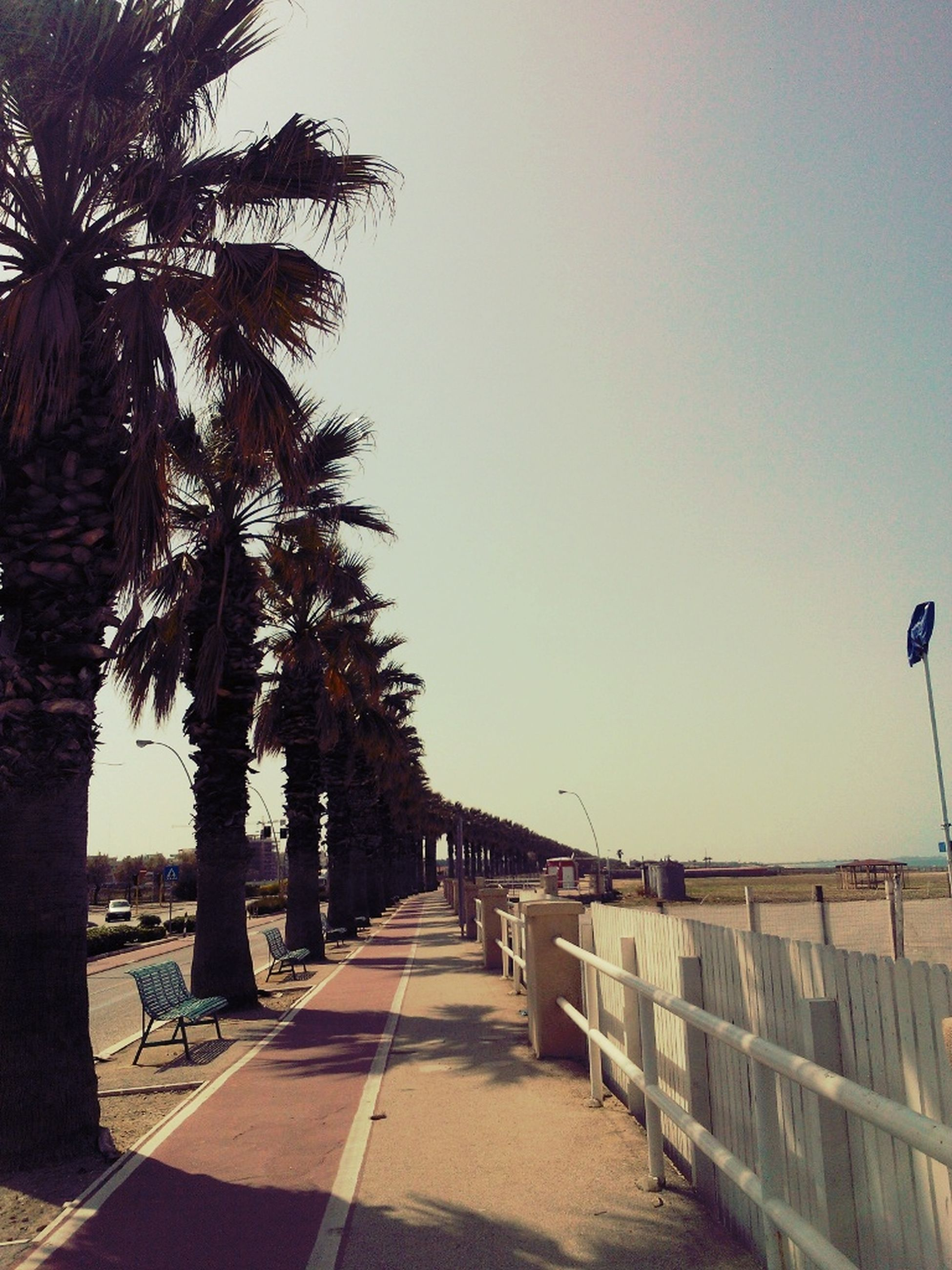Sun And Beach = Happiness